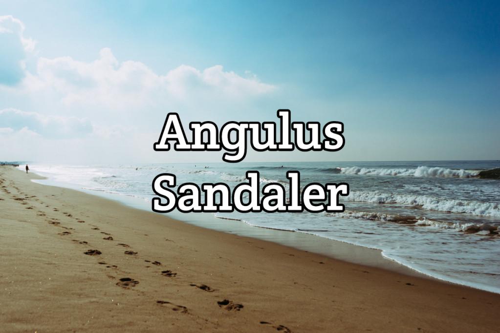 Angulus sandaler – alt du skal vide